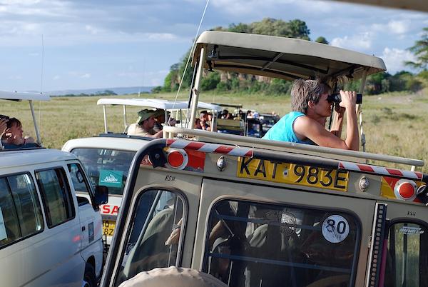 17 Geländewagen stauten sich im Lake Nakuru-Nationalpark auf der Suche nach dem Leoparden.