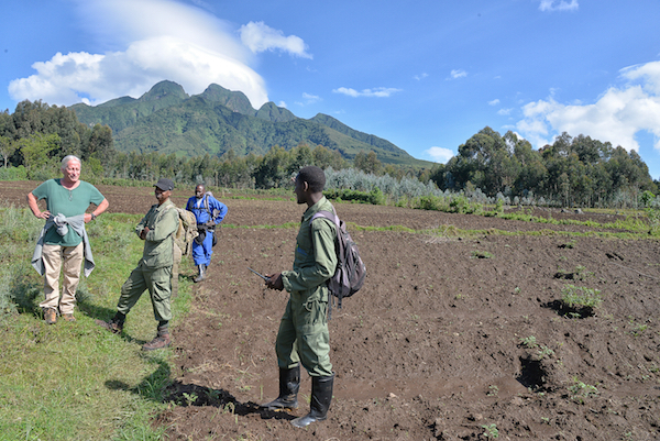 Unterhalb des Sabinjo-Vulkans hält sich unsere Hirwa-Gruppe auf.